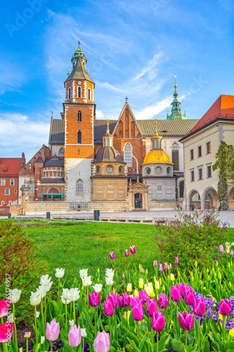 The city of Krakow, Poland, Wawel Castle