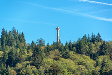 Astoria Column And Forest