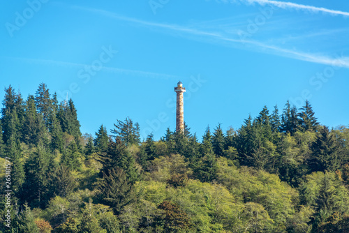 Astoria Column and Forest Canvas Print