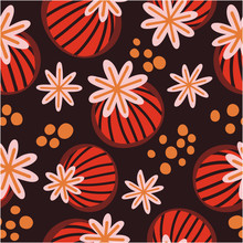 Poppy Seed Pods Dark Background