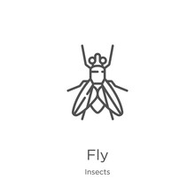 Fly Icon Vector From Insects C...