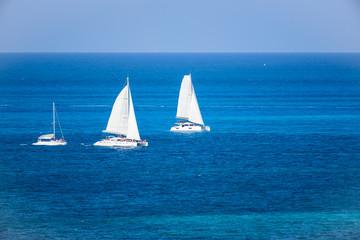 Fototapeta Morze Grupo de Veleros de dos velas en competencia regata en el mar caribe con contraste colores azul turquesa, Cancun, Mexico