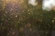 Leinwandbild Motiv Staub, Pollen und kleine Partikel fliegen durch die Luft im Sonnenschein.