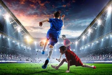 Little soccer champions. Mi...