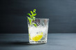 Old fashioned beverage with lime and mint leaves. Selective focus. Shallow depth of field.