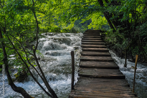 Aluminium Prints Forest river Wooden Hiking Trails in Plitvice Lakes National Park take you through lush green forest and over pristine lakes and waterfalls