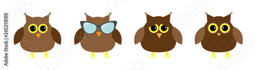 Cute owl set line. Big eyes, sunglasses. Cute cartoon kawaii funny character. Icons on white baby background. Isolated. Flat design.