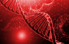 DNA Molecule Structure On Red ...