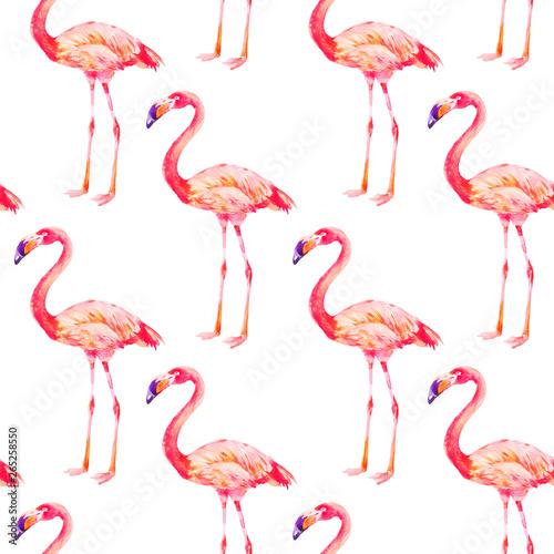 Canvas Prints Flamingo Bird Pink flamingo on white background. Seamless pattern, watercolor textile design