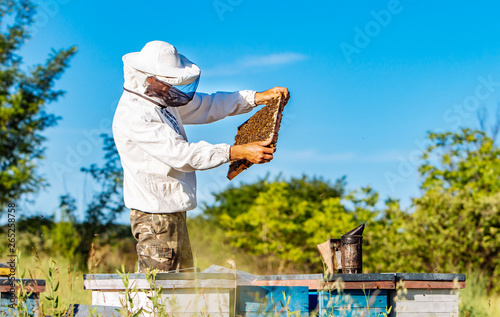 Foto Young beekeeper working in the apiary