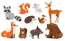 Forest Animal Set. Colored Ani...