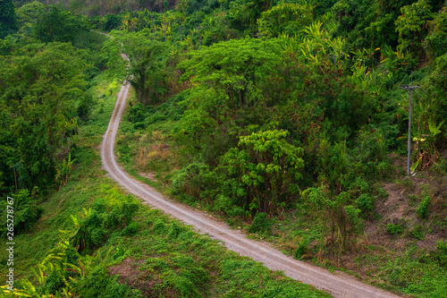 Rural roads Beside with green nature forest in the hill