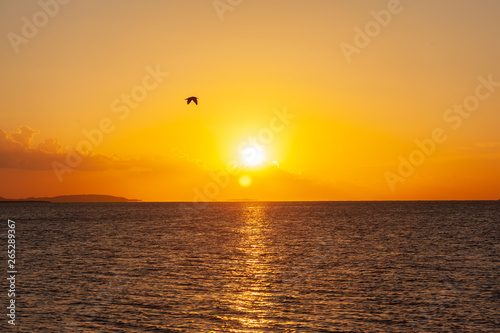 Poster Miel unrise over the red sea