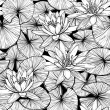 Seamless Pattern With Water Lilies. Black And White