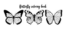 Vector Illustration Of Black And White Butterfly Contour. Coloring Book Template.