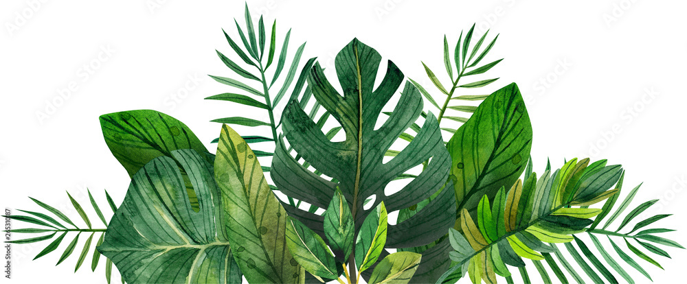 Fototapety, obrazy: watercolor frame of tropical leaves