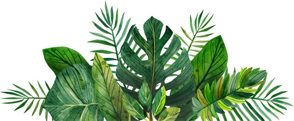 akvarelni okvir tropskog lišća