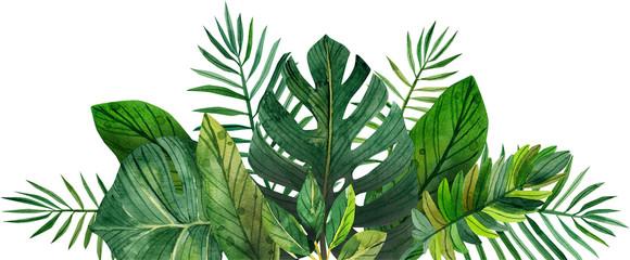 Fototapetawatercolor frame of tropical leaves