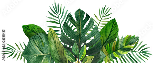 watercolor frame of tropical leaves