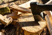 Splitting Of Dry Oak Stumps With Ax On Blurred Background Of Chopped Firewood. Cleaver Sticks Out In Oak Stump. Firewood Is Scattered Around Stump Of Oak Tree On Which Stump Prick.