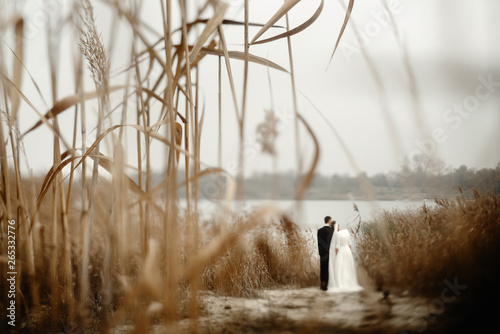 Fotografie, Obraz  gorgeous bride and stylish groom gently hugging at  beach lake in evening, beaut