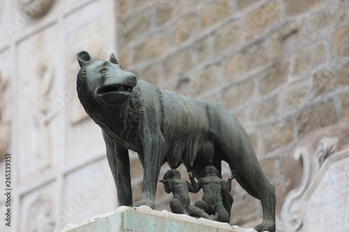Valokuva she-wolf in Rome with Remus and Romulus