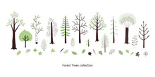 Forest Trees And Leaves Vector...