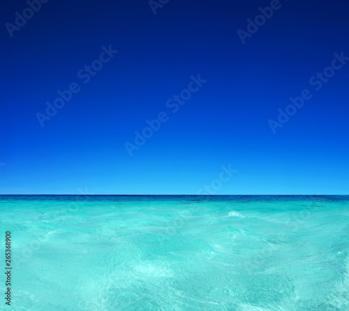 Wall Murals Green coral Blue sunny sea water surface