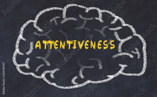 Photo Chalk drawing of human brain with inscription attentiveness