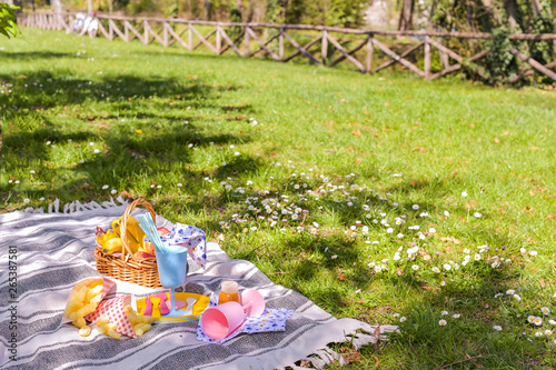 Poster Picnic Colored plastic dishes and fruit basket, outdoor picnic sandwiches in the park. Nice sunny day and summer lunch.