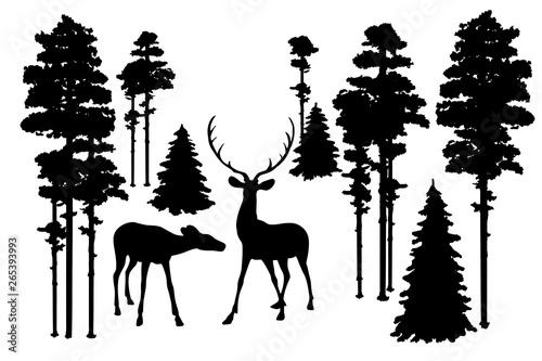 Fotografie, Obraz  Black silhouettes of north forest