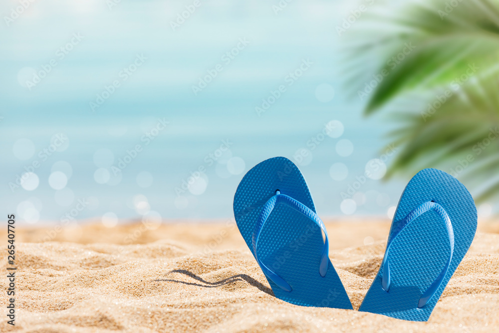 Fototapety, obrazy: flip flops on the sunny tropical beach with palm tree