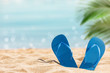 flip flops on the sunny tropical beach with palm tree