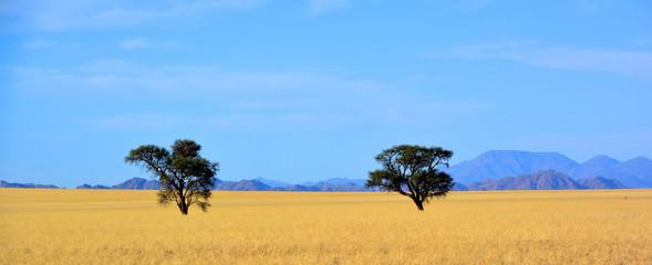 Landscape of  Namib-Naukluf...