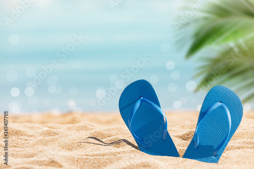 фотографія  flip flops on the sunny tropical beach with palm tree