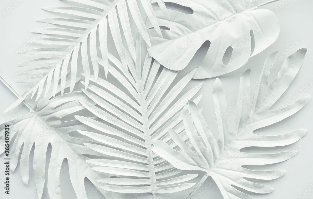 Fototapeta Collection of tropical leaves,foliage plant in white color.Abstract leaf decoration design background