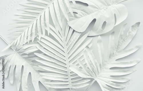 Collection of tropical leaves,foliage plant in white color.Abstract leaf decoration design background
