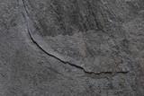 Fototapeta Kamienie - stone kamień stone