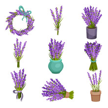 Set Of Different Bouquets Of F...