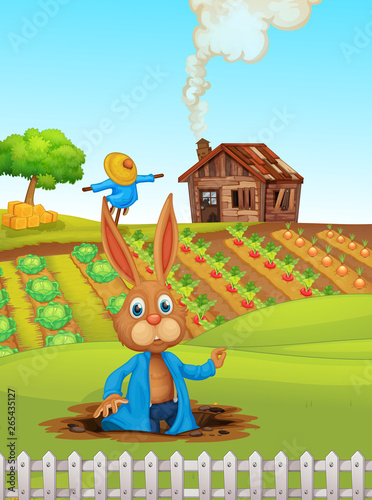 Rabbit at the farmland