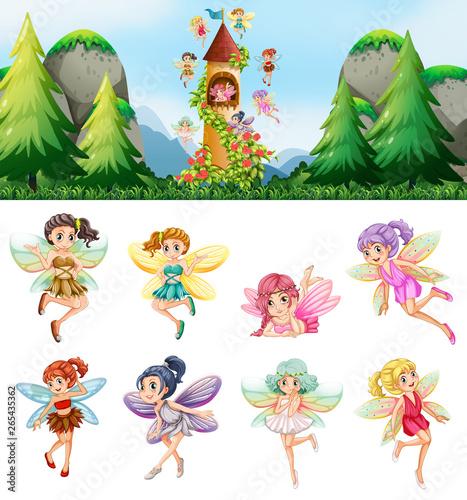 In de dag Kids Set of fairies in nature
