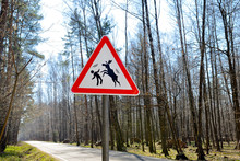 Sign About Of Wild Moose On A Forest Road.