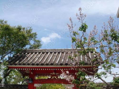 Fotografie, Obraz  Japanese temple