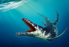 Kronosaurus Was A Marine Reptile That Lived In The Ocean During The Early Cretaceous Period When Dinosaurs. Water Reptile Realistic Illustration.