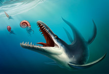 Kronosaurus Was A Marine Reptile That Lived In The Ocean During The Early Cretaceous Period When Dinosaurs. Water Reptile Realistic Illustration. Giant Ammonite And Cameroceras.
