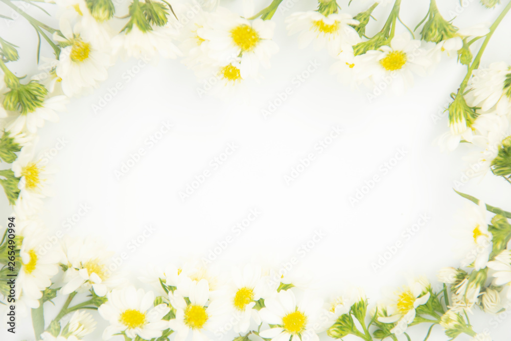 Fototapety, obrazy: Flowers composition. Border made of daisy white flowers. Flat lay, top view