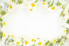 Flowers Composition. Border Made Of Daisy White Flowers. Flat Lay, Top View