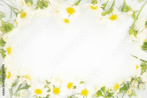 Keuken foto achterwand Bloemen Flowers composition. Border made of daisy white flowers. Flat lay, top view