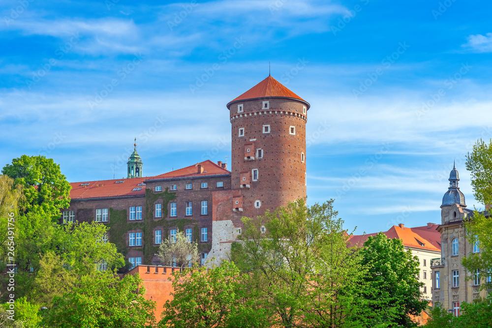 Fototapety, obrazy: Wawel wśród drzew, Kraków