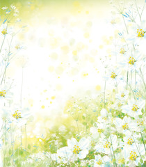 FototapetaVector floral background. Spring background.